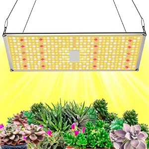 GROSSYLAND 2000W Quantum Panel LED Grow Light Bulbs Full Spectrum for Indoor Plants, High Power Growing Lamps Bulbs for Hydroponic Greenhouse Seedlings with 416 LEDs for Home and Commercial