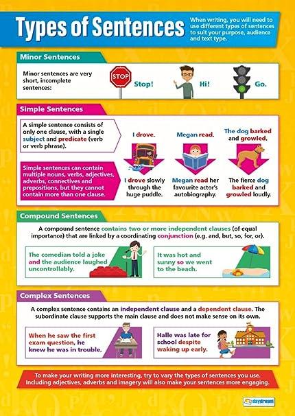 Amazon com: Types of Sentences | English Posters | Laminated