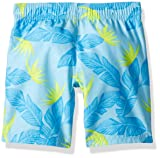 Hurley Baby Boys' Little Graphic T-Shirt and Shorts