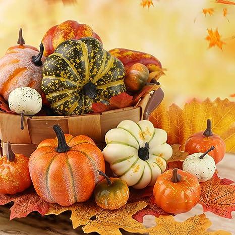 Thanksgiving Coaster Fall Thanksgiving Decor Fall Coaster Harvest Coaster Harvest Decorations Thanksgiving Season Fall Decorations
