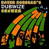 DAVID RODIGAN'S DUBWIZE SHOWER