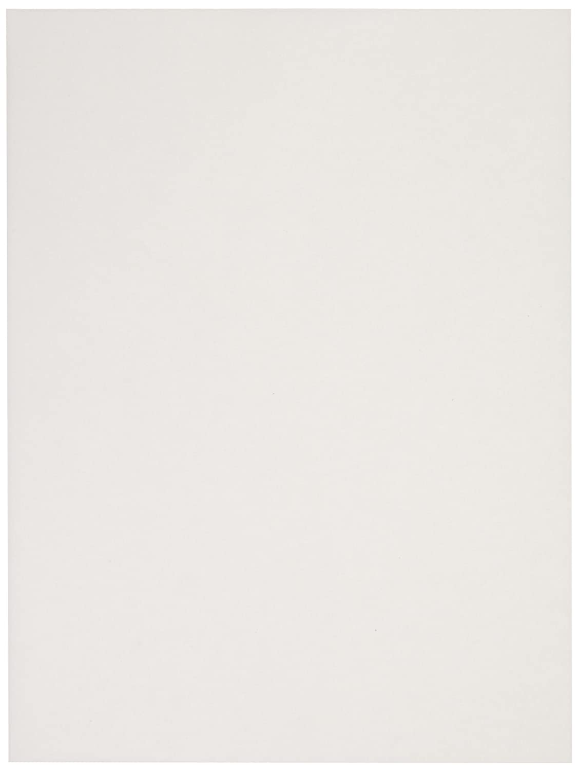 Sax Drawing Paper - 70 pound - 9 x 12 inches - Pack of 500 - White School Specialty 206309