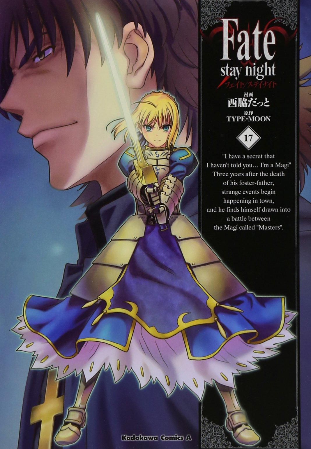 Download Fate / stay night (17) (Kadokawa Comics Ace 150-18) (2011) ISBN: 4041200490 [Japanese Import] pdf