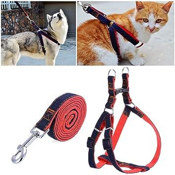 Pet Arnés, ajustable y Heavy Duty Denim Adiestramiento de perros Walking cuello correa para perro gato mascotas: Amazon.es: Productos para mascotas