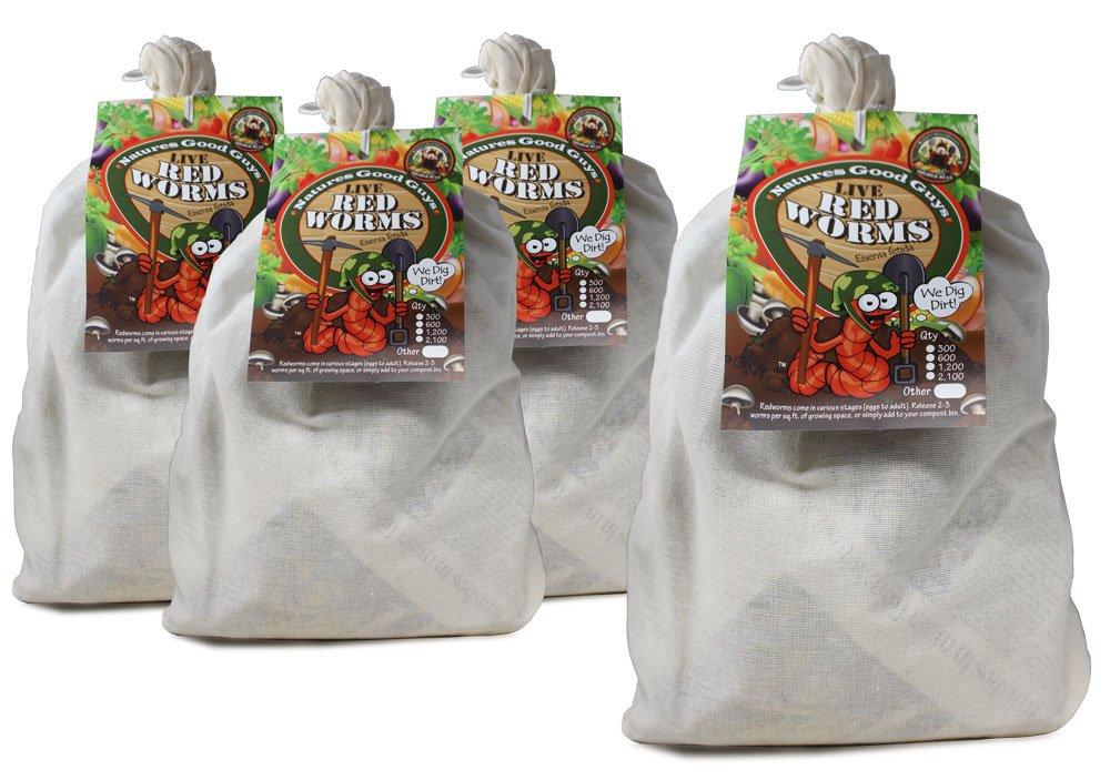 Compostaje gusanos - 5, 200 rojo Wigglers: Amazon.es: Jardín