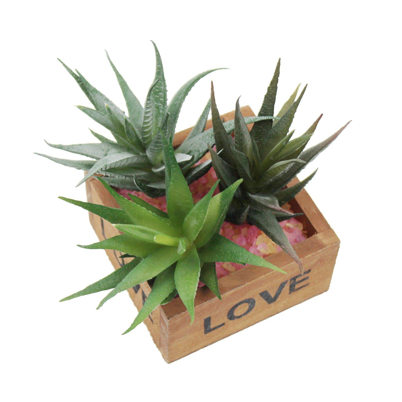 peque/ñas plantas sin maceta para decoraci/ón colores surtidos 3 piezas de imitaci/ón realistas de suculentas para invernadero de LJY
