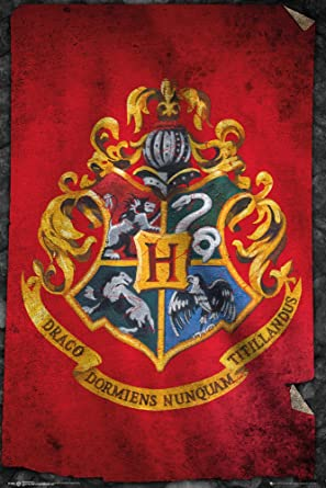 Amazon.com: Hogwarts de Harry Potter- Bandera Póster Mini de ...