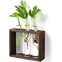 Mkono Wall Hanging Test Tube Planter Modern Flower Bud Vase with Wood Stand Tabletop Glass Terrarium for Propagating Hydroponics Plants, Home Office Decoration
