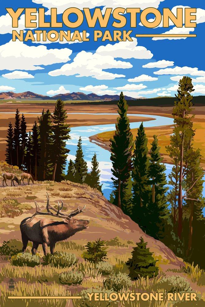 イエローストーン国立公園 – イエローストーン川とElk 24 x 36 Giclee Print LANT-48337-24x36 24 x 36 Giclee Print  B00N5CHYRM