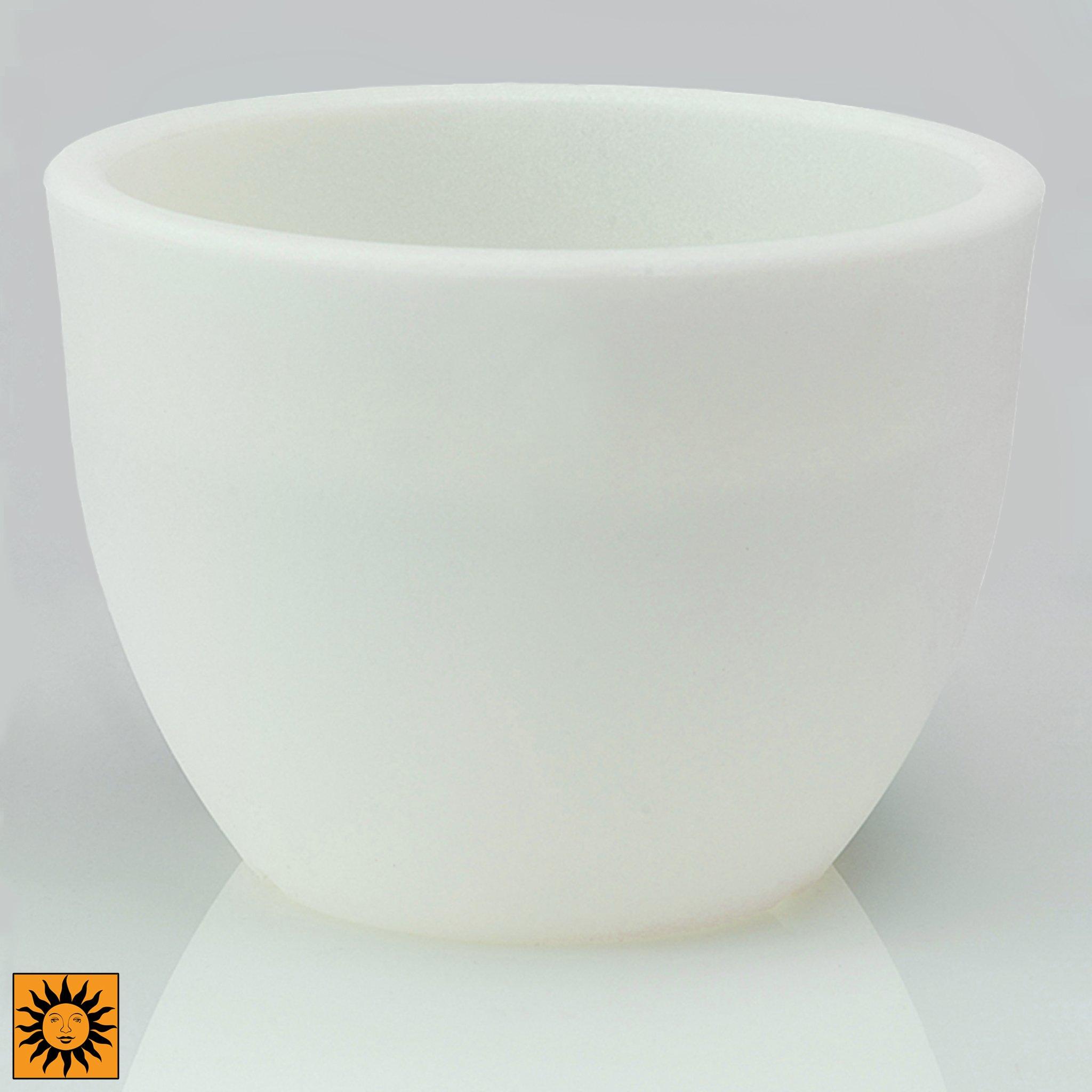 Design Toscano CF2622 Lido Flower Cachepot-Revolutionary Garden Decorations Glow in the Dark Planter Urn, 15.5'', White