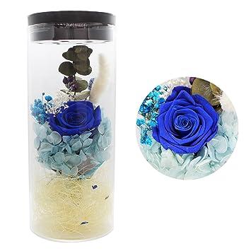 Flor eterna preservada fresco flor de cristal de la cubierta flores coloridas con la luz colorida
