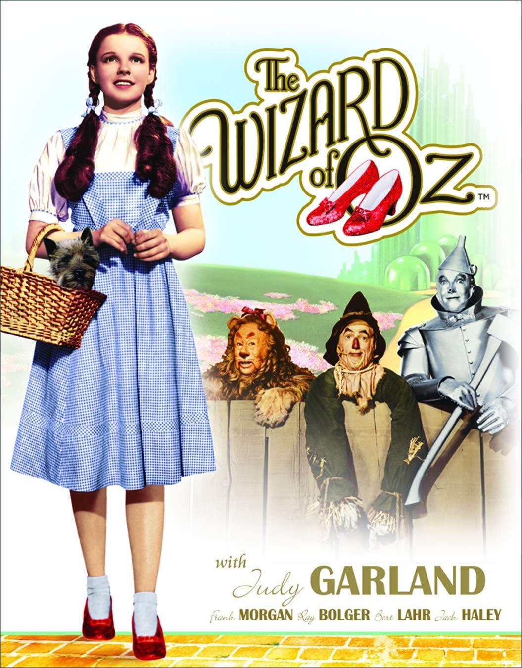 "Desperate Enterprises The Wizard of Oz Dorothy & Toto Tin Sign, 12.5"" W x 16"" H"