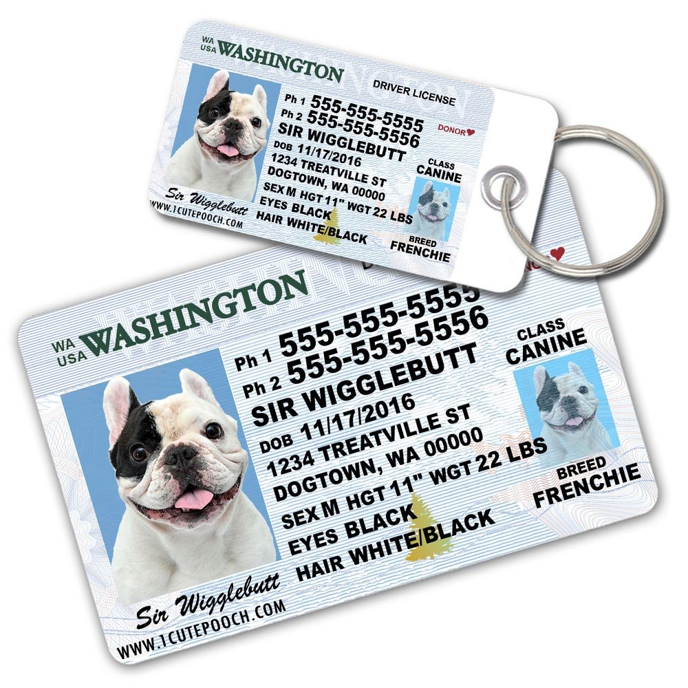 Washington Driver License Custom Dog Tag for Pets and Wallet Card - Personalized Pet ID Tags - Dog Tags For Dogs - Dog ID Tag - Personalized Dog ID Tags - Cat ID Tags - Pet ID Tags For Cats by 1 Cute Pooch