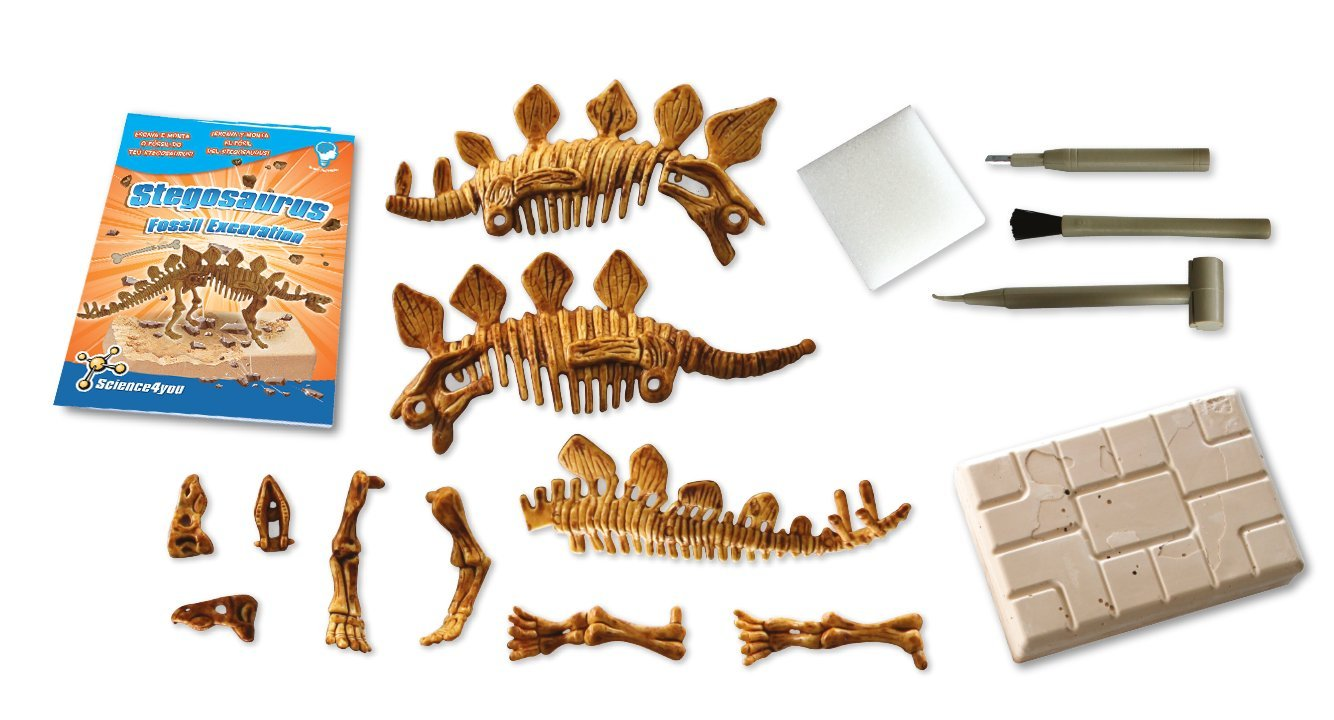 Science4you Spielzeug Wissenschaft und Bildung Brachiosaurus