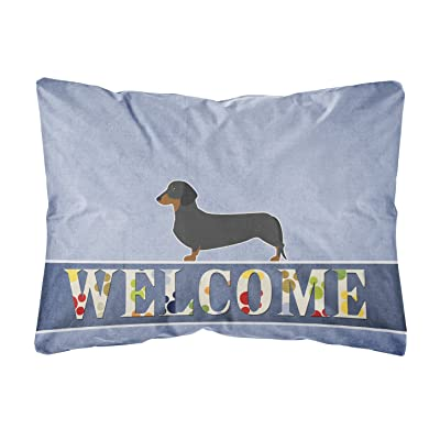 Caroline's Treasures BB5486PW1216 Dachshund Welcome Canvas Fabric Decorative Pillow, 12H x16W, Multicolor : Garden & Outdoor