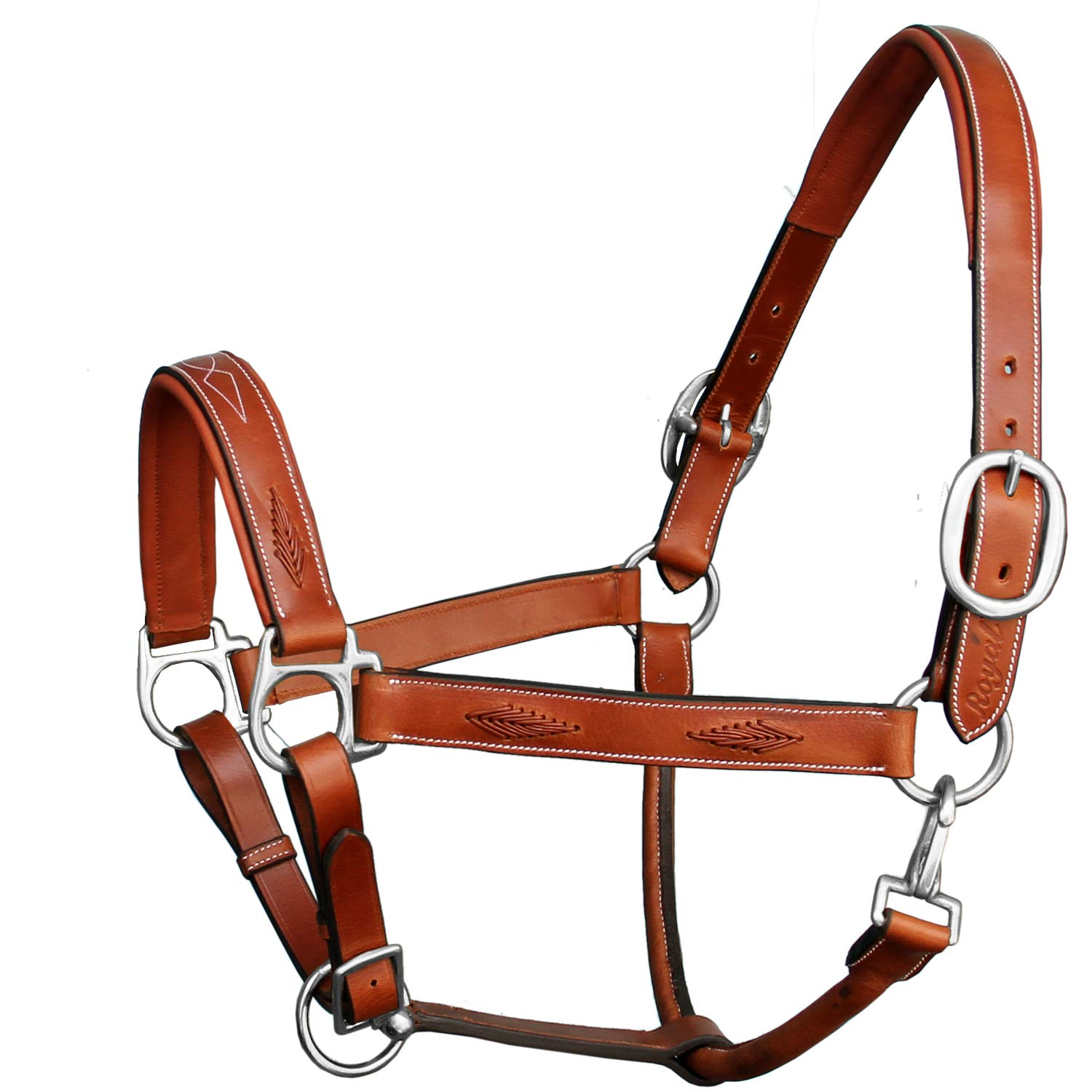 Conker (Tan Brown) Medium (Cob) Conker (Tan Brown) Medium (Cob) Exion Fancy Braided Padded Halter and Brass Nickel Buckles   Equestrian Show Jumping Padded Halter   English Horse Riding Premium Tack   Conker   Cob