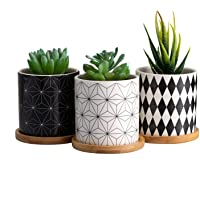 Dsben 3.5 Inch Succulent Plant Pots, Small Modren Pattern Flower Ceramic Planter Indoor with Bamboo Tray for Cactus…