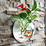 Fish Bowl Acrylic Hanging Aquarium Wall Mounted 1.5 Gallon Pet Fish Tank (big)