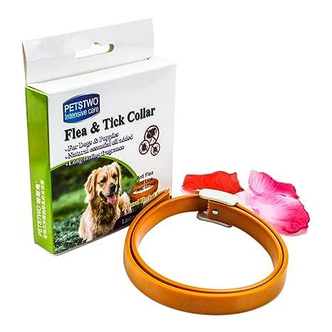 BUTEFO pulgas y garrapatas Collar para todo tipo de perros y gatos natural aceite esencial