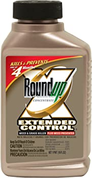 Roundup 5720010 Concentrate Extended Weed Killer