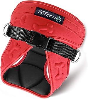 Comfort-Fit Harness