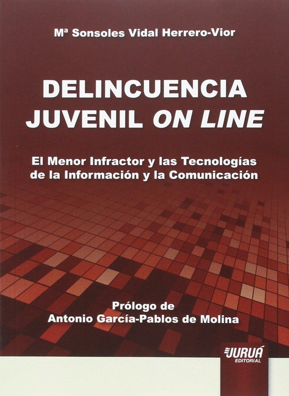 Delincuencia juvenil on line: Amazon.es: Mª Sonsoles Vidal Herrero-Vior: Libros