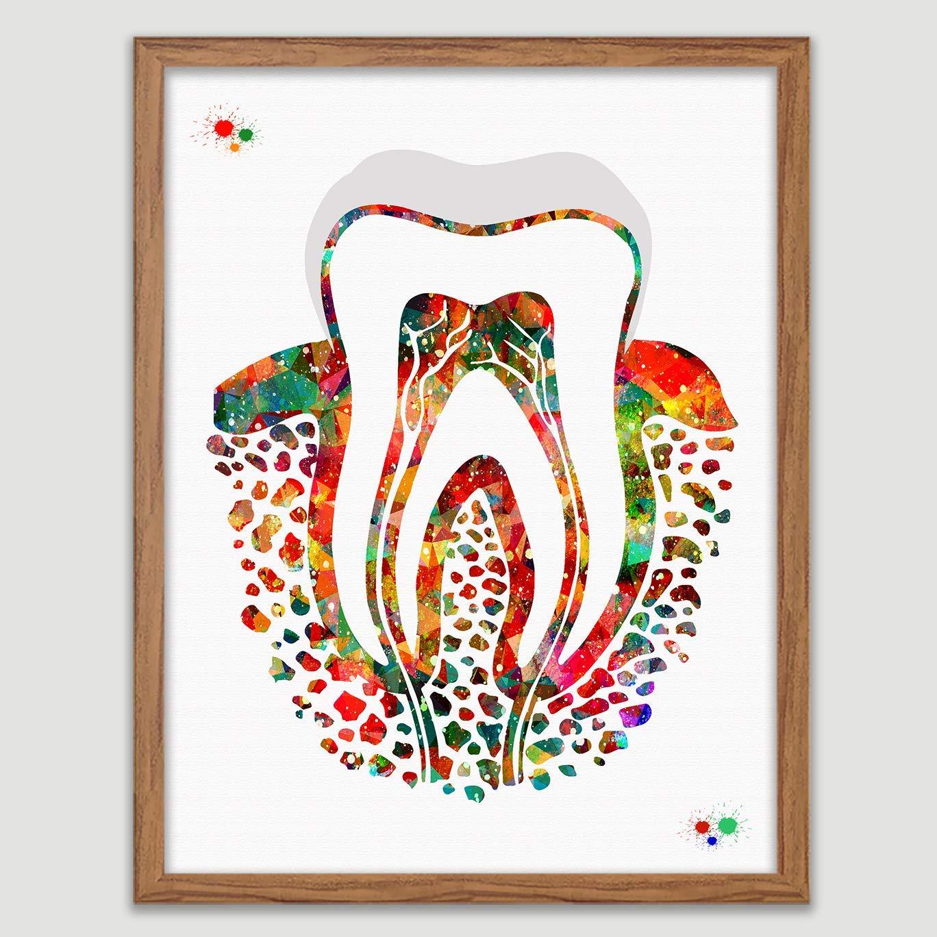 Teeth Chart Watercolor Print Tooth Anatomical Art Dental Clinic Dentistry Decor
