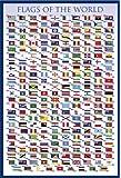 Educational - Flags of the World - Bildungs Poster Plakat Druck - Grösse 61x91,5 cm + Wechselrahmen der Marke Shinsuke® Maxi aus Kunststoff blau - mit Acrylglas-Scheibe.