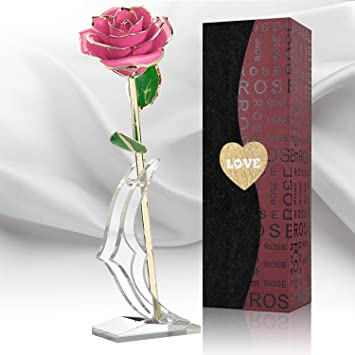 81b521c8539 WEOOLA Rose
