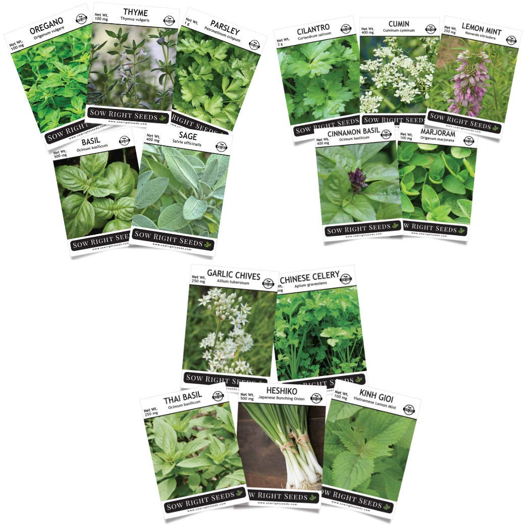 Sow Right Seeds - Italian, Asian, Mexican Herb Garden Seed Collection to Plant - All Non-GMO Heirloom Seeds with Full Instructions for Planting an Easy to Grow Kitchen Garden, Indoors or Outdoor