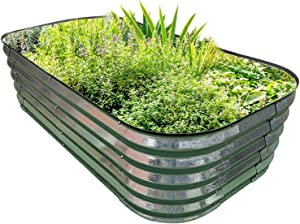 PINTIA1 Steel Raised Garden Beds for Vegetables Flowers, Large Outdoor Planter Herbs Garden Bed Galvanised Steel Size (6X3X1.45 FT, Galvanized)