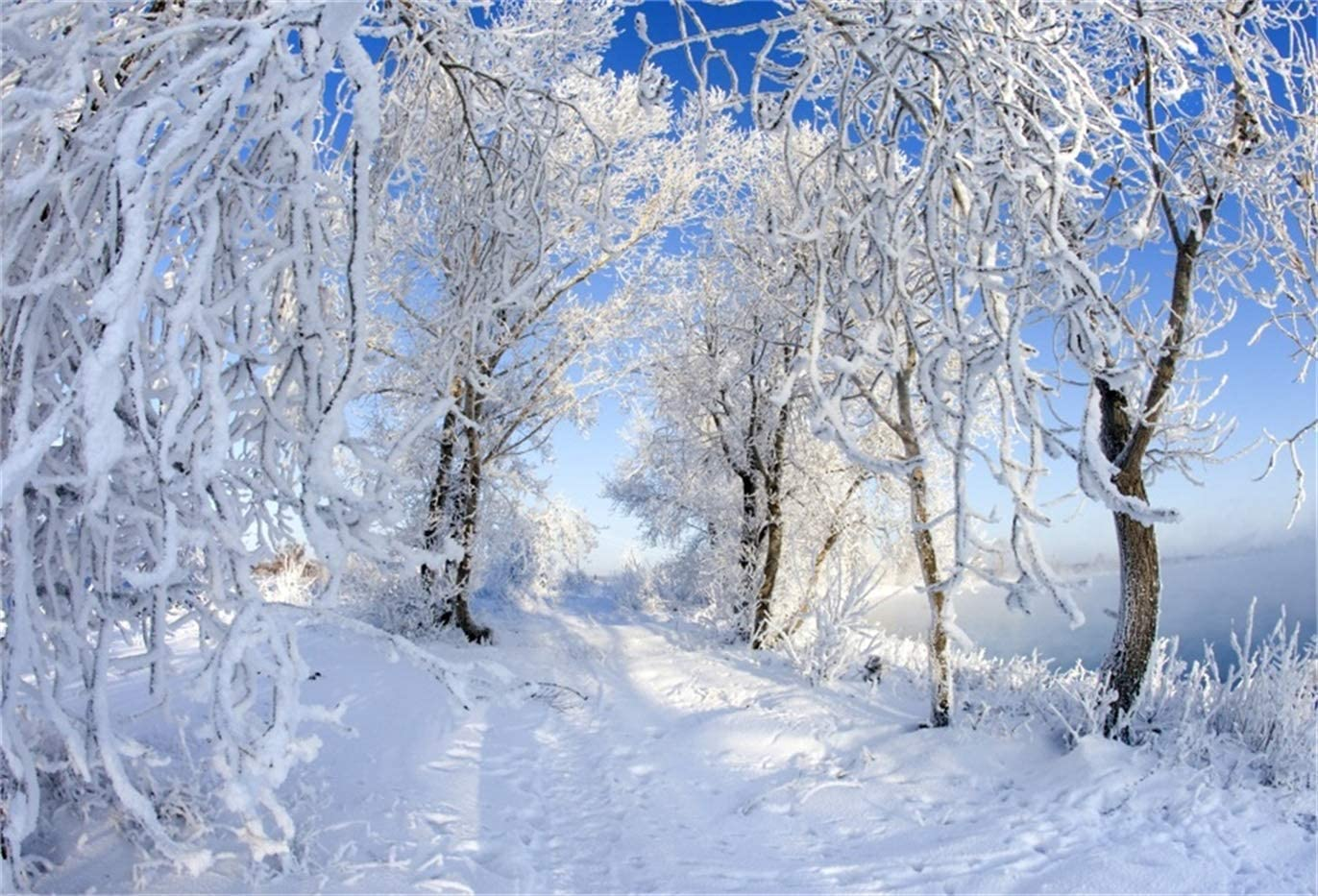 GoEoo 10x8ft Winter Forest Frozen Tree Background Snowy Landscape Photography Backdrop Woods Snow Covered Tree Mountain Skiing Snowfield Photo Studio Props Christmas Holiday Tour New Year Vinyl Banner