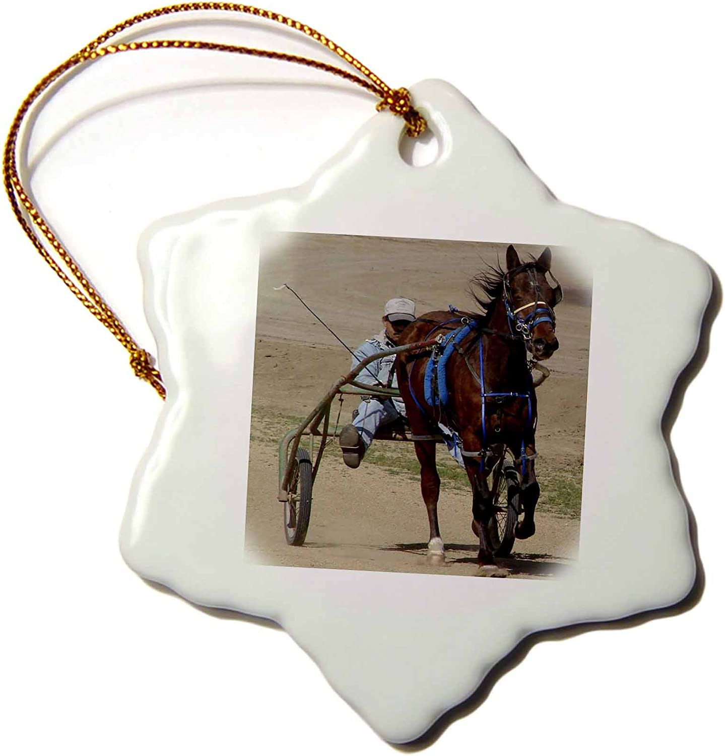 3dRose orn_6434_1 Harness Racing Porcelain Snowflake Ornament, 3-Inch