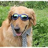かわいい キュート 大型 犬 ワンちゃん 用 サングラス ゴーグル メガネ ペット 用品 グッズ (02:ブルー)
