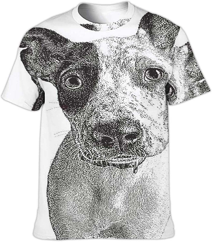 Three Funny Cats - -,Funny Humor T-Shirt Cotton T-Shirt for Running Grm Kitten S