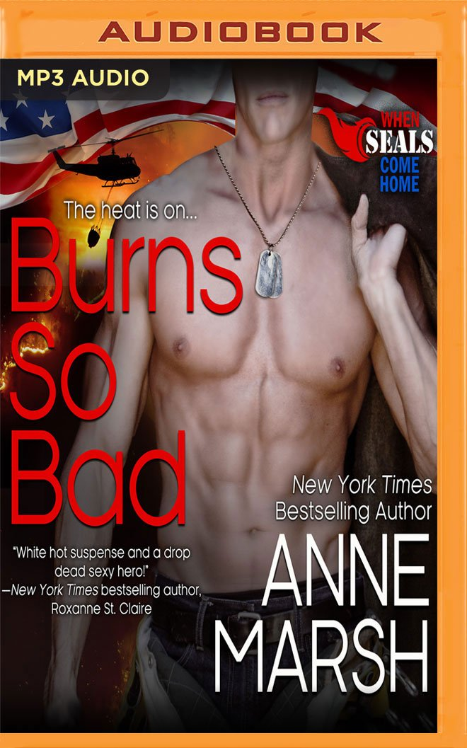Read Online Burns So Bad (When SEALs Come Home) pdf