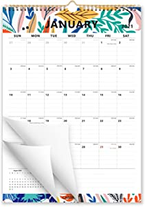Cabbrix 2020-2021 Year Monthly Wall Calendar, Study Wall Calendar for Home Schooling Plan, Wirebound, 17 x 12 Inches