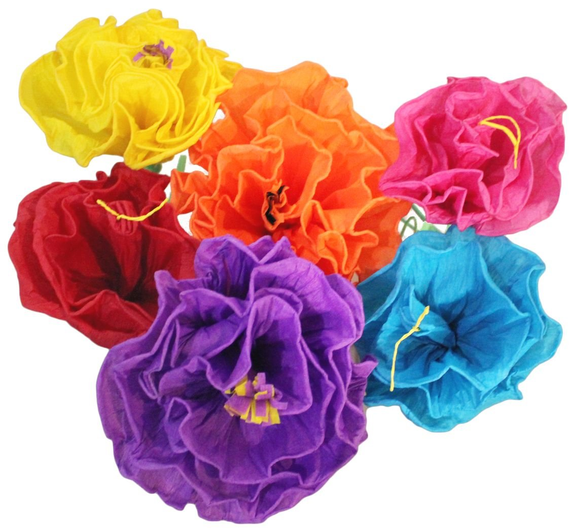 Amazon Mexican Paper Flower Set Of 6 Tissue Paper Hand Made