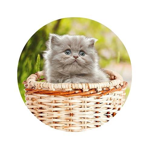 TUOKING Nette Katze Im Korb Rutschfeste Wasserdichte Badteppiche Dekoration  Schlafzimmer, Wohnzimmer Schützen Boden Und Tür