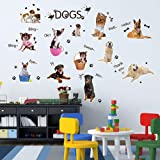 Amazon Com Ainolway 3d Cute Dog And Cat Wall Decals For Kids Rooms
