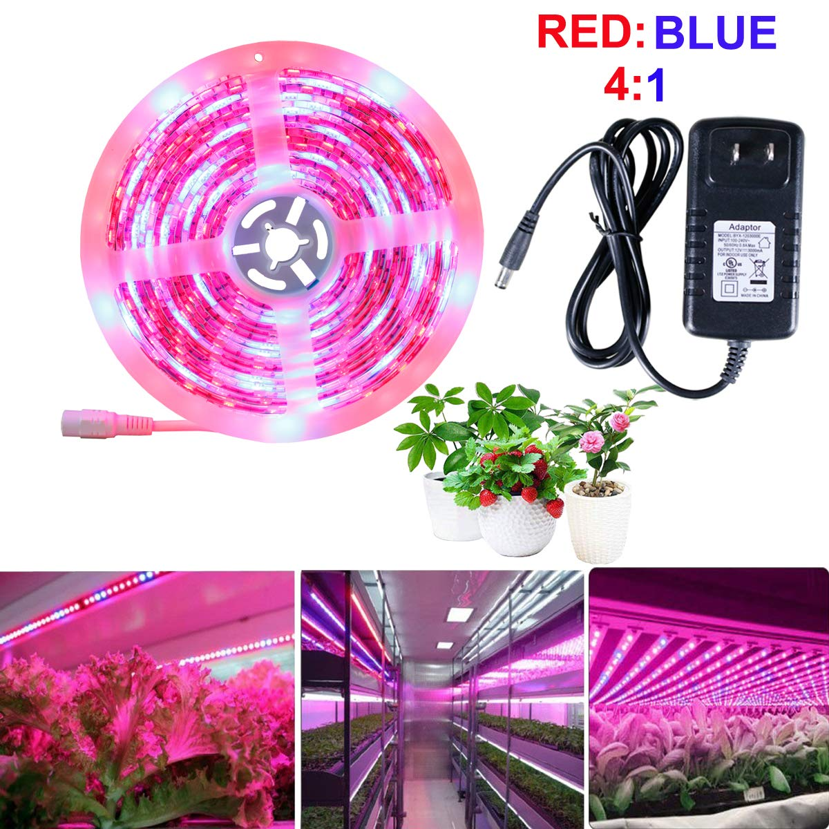 LED Strip Light SELIAN LED Plant Grow Strip Light with 12V Power Adapter 16.4ft 5m 5050 Waterproof Full Spectrum RED Blue 4 1 Rope Light for Aquarium Greenhouse Hydroponic Plant Garden Flowers