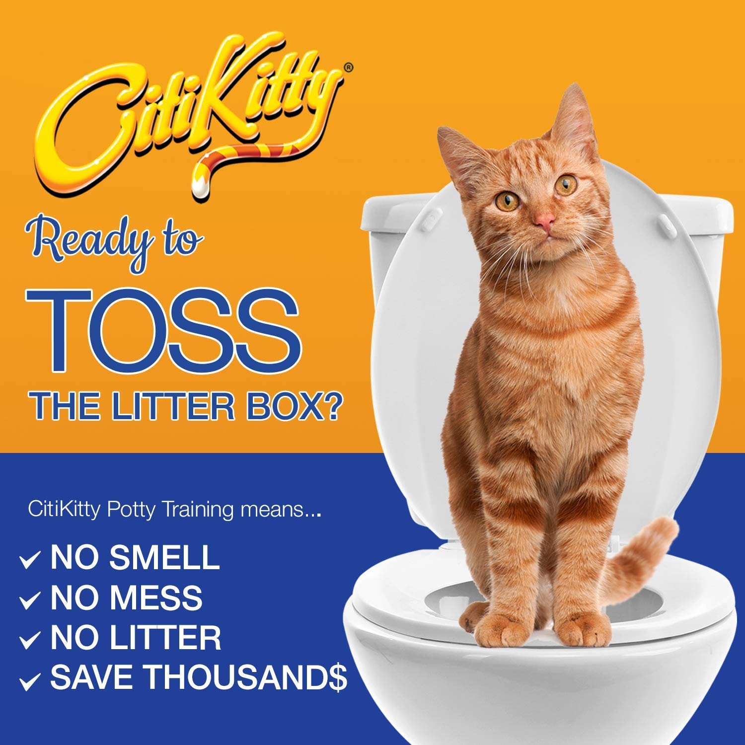 Buy Citikitty Cat Toilet Training Kit Online At Low Prices In India Amazon In