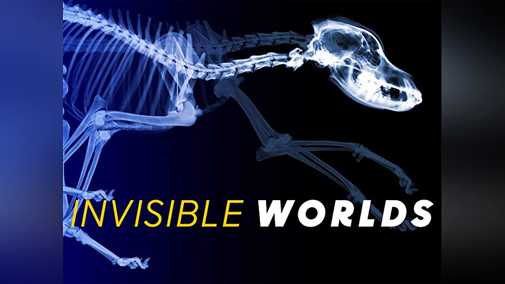 Invisible Worlds - Season 1