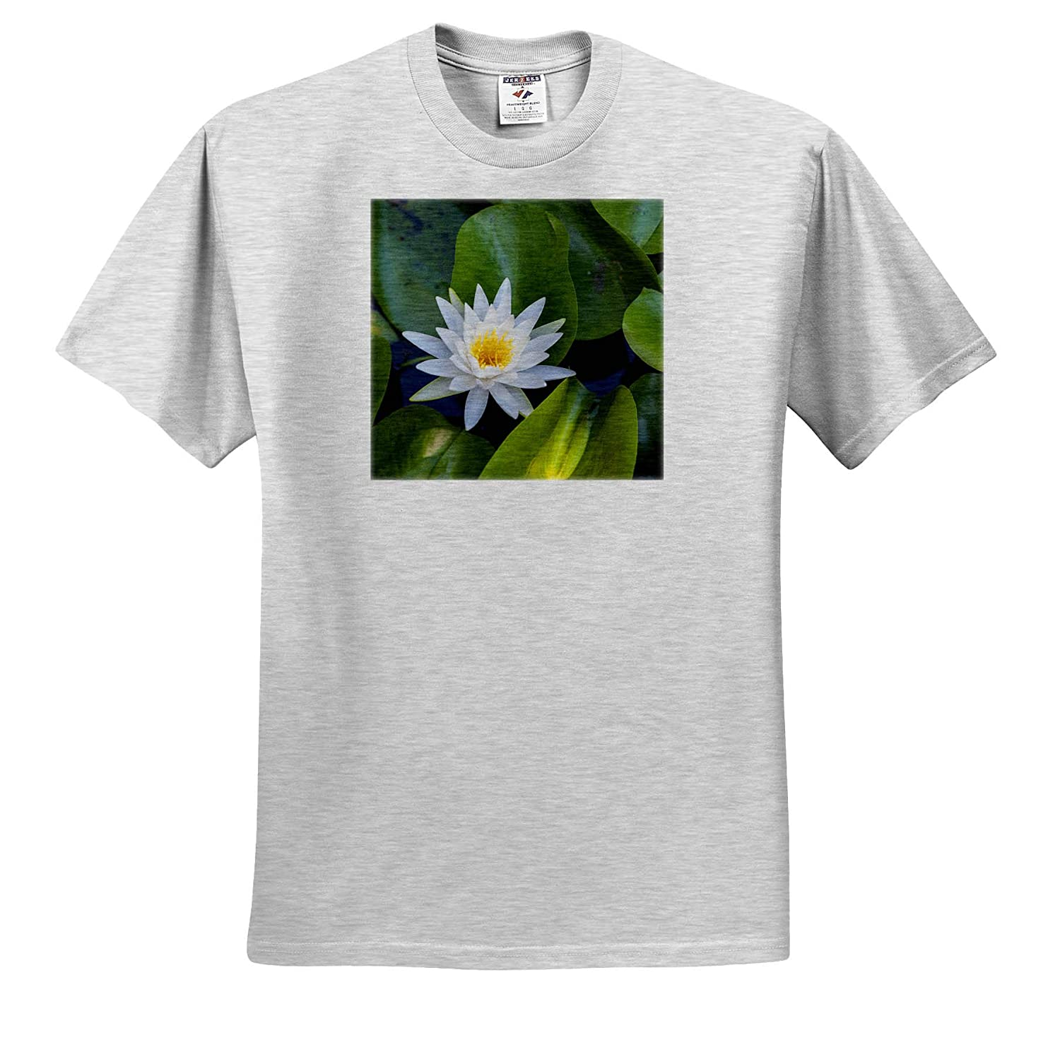 Austin ts/_315028 3dRose Danita Delimont Adult T-Shirt XL Blooming Water Lily USA Flowers Texas