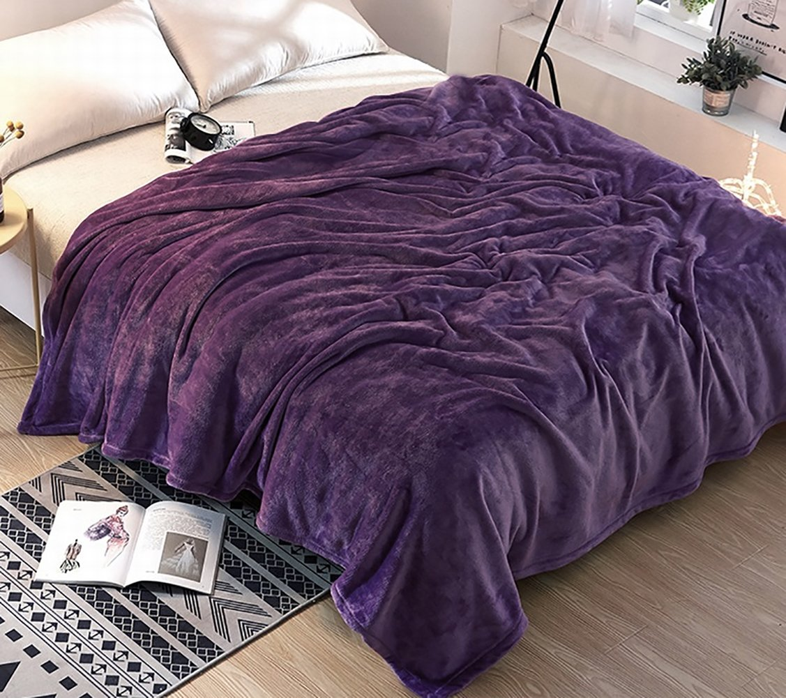 Ruikasi Flannel Fleece Blanket Purple Queen Size Summer Cooling Warm Plus Microfiber Lightweight Blankets for Bed Couch Sofa,80 by 90 Inches