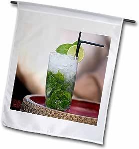 Nano Calvo Ibiza - Mojito Cocktail, Ibiza - 18 x 27 inch Garden Flag (fl_107758_2)