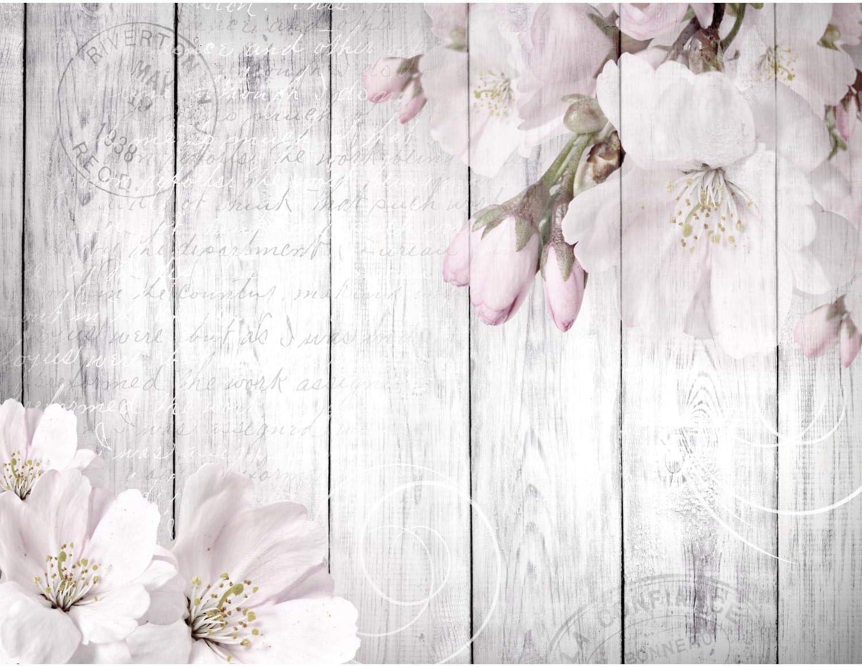 9258010c Papel Pintado Fotogr/áfico Flores rosas 308 x 220 cm Tipo Fleece no-trenzado Sal/ón Dormitorio Despacho Pasillo Decoraci/ón murales decoraci/ón de paredes moderna 100/% FABRICADO EN ALEMANIA