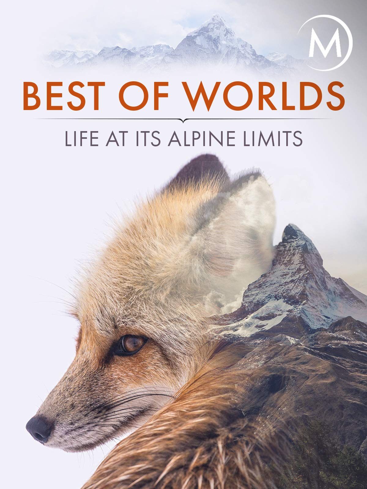 Best of Worlds: Life at its Alpine Limits