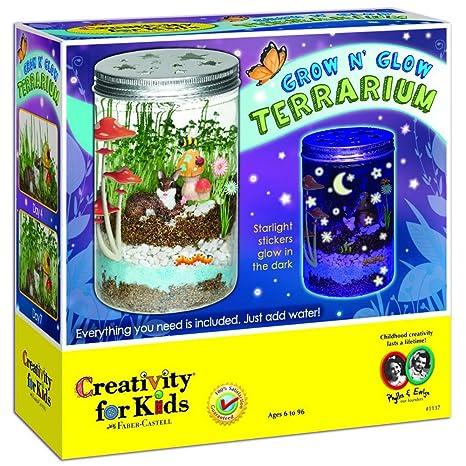 Nueva Creatividad para niños creciendo n Glow terrario ...