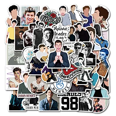Singer Shawn Mendes Stickers for Water Bottles, 50 Pack Stickers Trendy Laptop Stickers Guitar Computer Water Bottle Stickers for Teen Children (Shawn Mendes): Arts, Crafts & Sewing